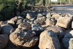 IMG_4336.boulders6